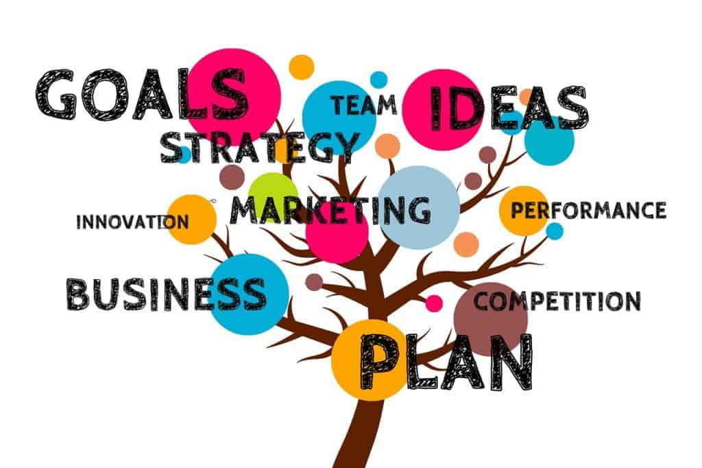Develop a Business Growth Strategy