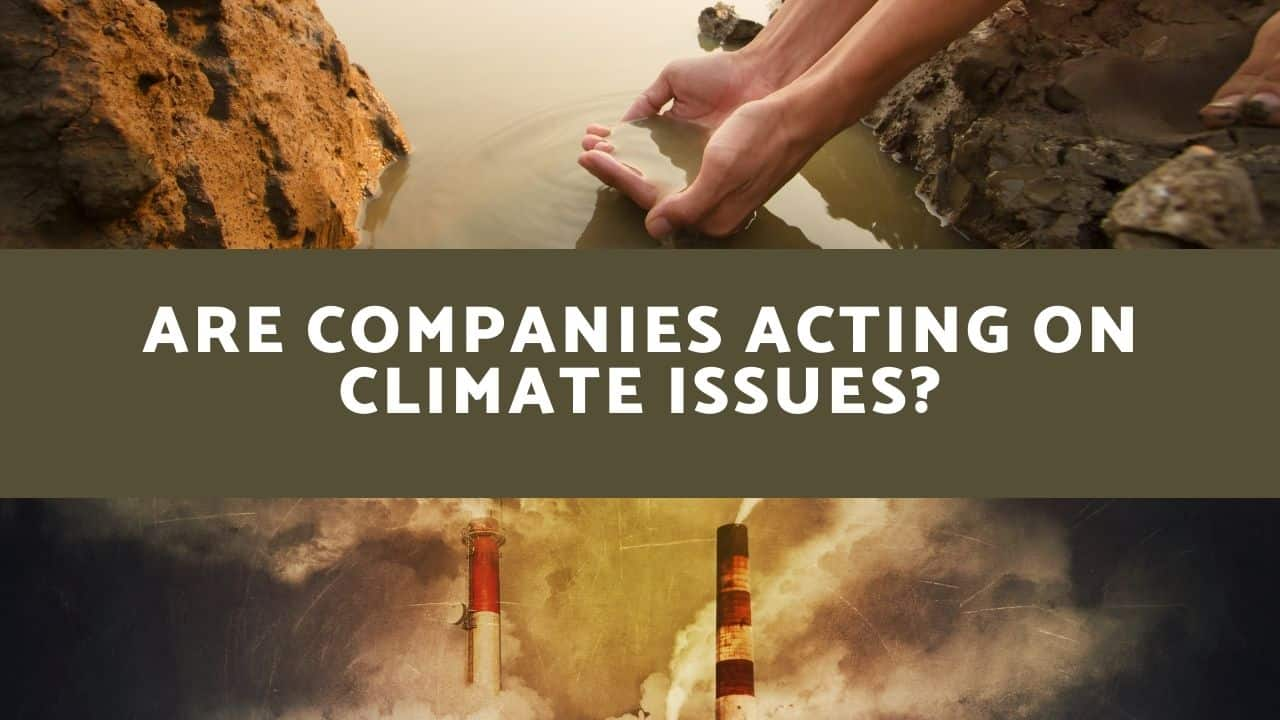 Are Companies Acting On Climate Issues?