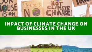 Impact of Climate Change on Businesses In The UK